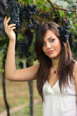 Beautiful young girl picking grapes — Stock Photo