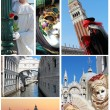 Venice Carnival collage — Stock Photo
