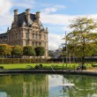 Reflection of palace in Tuileries garden - Stock Photo
