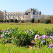 Chenonceau castle and front garden — Foto Stock
