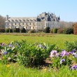 Chenonceau castle and front garden - Stock Photo