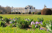 Chenonceau castle and front garden — Stock Photo