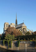 Notre Dame at sunrise — Stock Photo