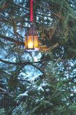 Lanterna de inverno — Foto Stock