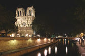 Notre Dame of Paris lighted at night — Stock Photo