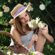 Young girl gardening among white roses - Stock Photo