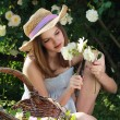 Young girl gardening among white roses - 