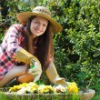 Stock Photo: Beautiful happy woman gardening among flowers