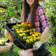 Young gardener and her new flowers - Stock Photo