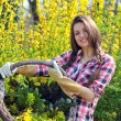 Smiling attractive woman shows wicker basket full of yellow flow — Stock Photo