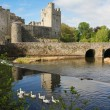 Irish castle of Cahir — Stock Photo #26676181