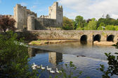 Irish castle of Cahir — Stock Photo