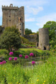 Blarney castle from the gardens — Stock Photo