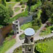 Blarney castle from top — 图库照片