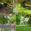 Blarney castle gardens collage — Stock Photo