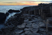 Giant causeway in sunset light — Stock Photo