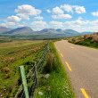 Ring of Kerry road — Stock Photo