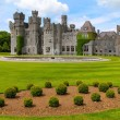 Ashford castle garden and fountain — Stock Photo