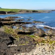 Mullaghmore cliffs — Stock Photo #27618997
