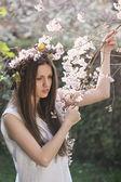 A beautiful girl among cherry flowers — Stock Photo