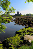 Dunguaire castle taken from the trees — Stock Photo