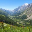 Ferret Valley and Mont Blanc panoramic view — Stock Photo #30381583
