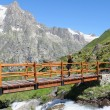 Hiking girl on a mountain bridge — Stockfoto