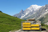 Mountain trail indications and Mont Blanc — Stock Photo