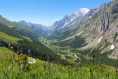 Ferret Valley and Mont Blanc panoramic view — Stock Photo
