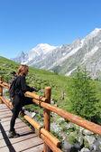 Hiking girl looks at alpine panorama — Stock Photo