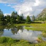 Beautiful cloudscape reflection — Stock Photo #30749581