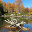 Beautiful alpine lake in autumn — Stock Photo