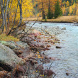 Mountain stream in autumn — Stock Photo