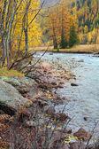 Arroyo de montaña en otoño — Foto de Stock