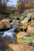 Mountain stream — Photo