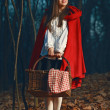 Photo: Smiling Little Red riding hood in forest at night