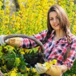 Beautiful young woman shows wicker basket full of yellow flowers — Stock Photo