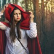 Dark portrait of Little red riding hood — Stock Photo #42317597