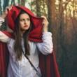 Dark portrait of Little red riding hood — Stock Photo #42317597