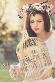 Vintage cage full of butterflies — Stock Photo