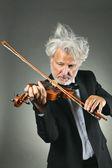 Violinista senior con peli bianchi sconvolti — Foto Stock