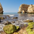 Praia da marinha in Algarve — Stock Photo #48610677