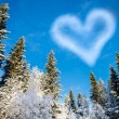 Forest with blue sky and a cloud shaped heart for Valentine's Da — Stock Photo