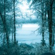 Winter picture of the foggy lake - Stock Photo