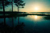Blue sunset over the lake that overflowed — Foto de Stock