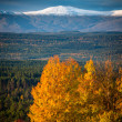Autumn image with snowy mountains — Stock Photo