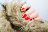 Woman's hand with red long nails — Стоковое фото