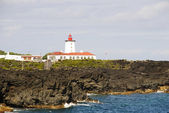 Lighthouse at Pico, Azores — Stockfoto