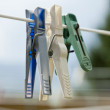 Foto Stock: Clothes pegs on clothesline