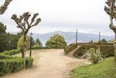 比戈,加利西亚的城市公园 — 图库照片